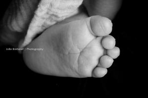 newborn | nouveau-né